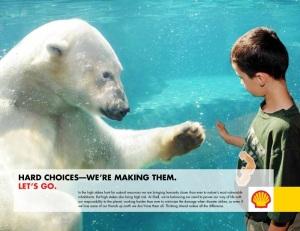 odin-new bear ad