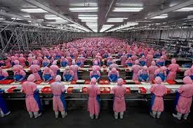 Assembly Line in China