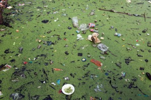 Garbage and sewage chokes a river. Source Getty