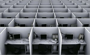 Cubicles via The Repetitive Swan.