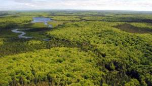 Giants Lake Wilderness, Nova Scotia. Source, The Chronicle Herald.