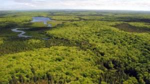 Giants Lake Wilderness, Nova Scotia. Source, The Chronicle Herald.
